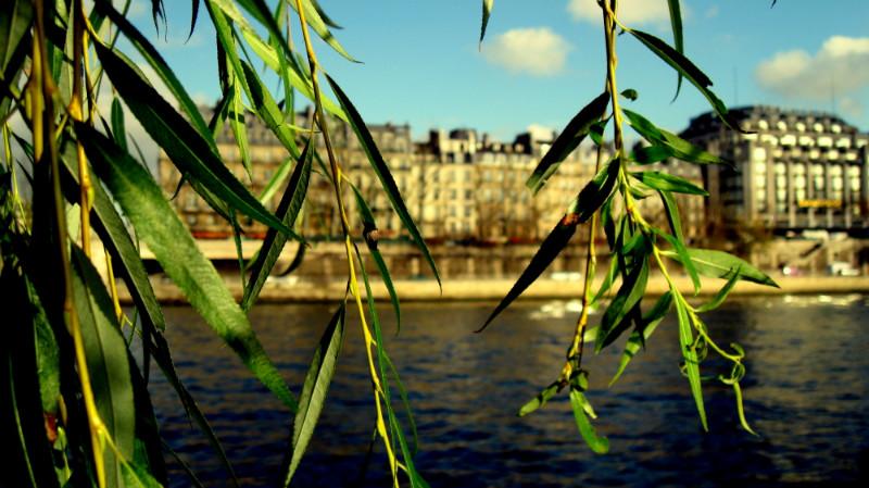 Достопримечательности Парижа  Paris10ru все про Париж!