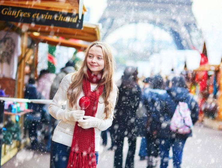 Новогодние каникулы в Париже