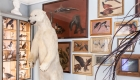 Музей охоты и природы в Париже